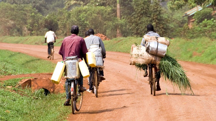 Group of men riding bicycles with water and farm crops