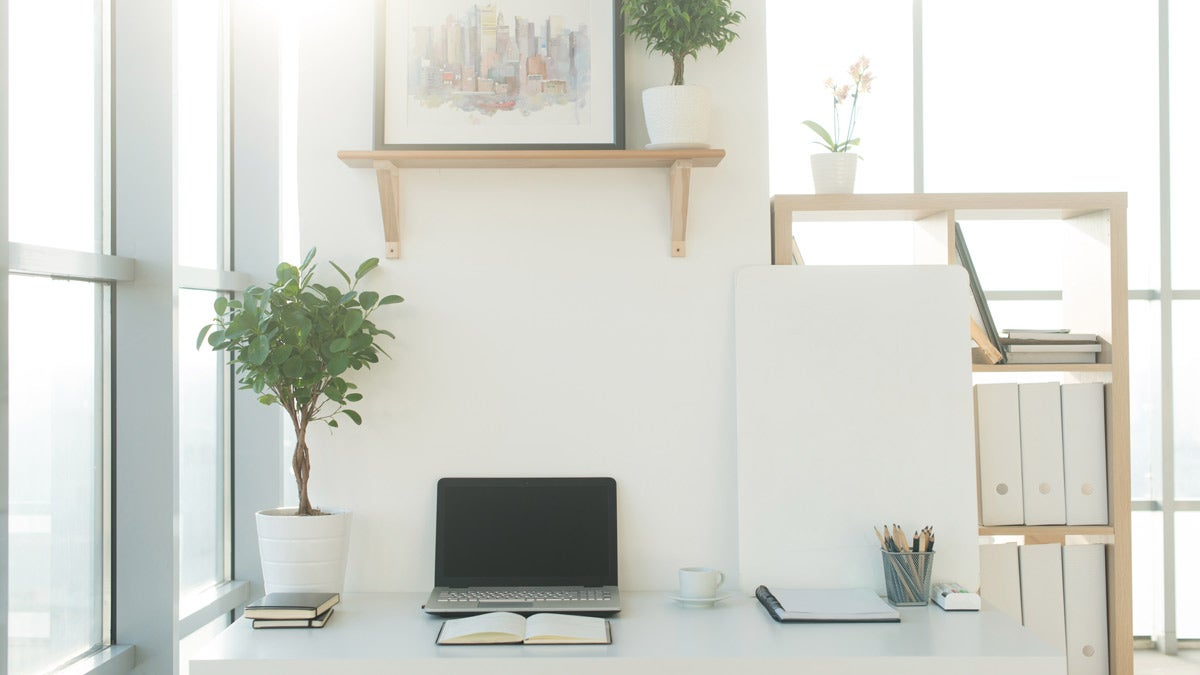 Organized desk space with plant and laptop