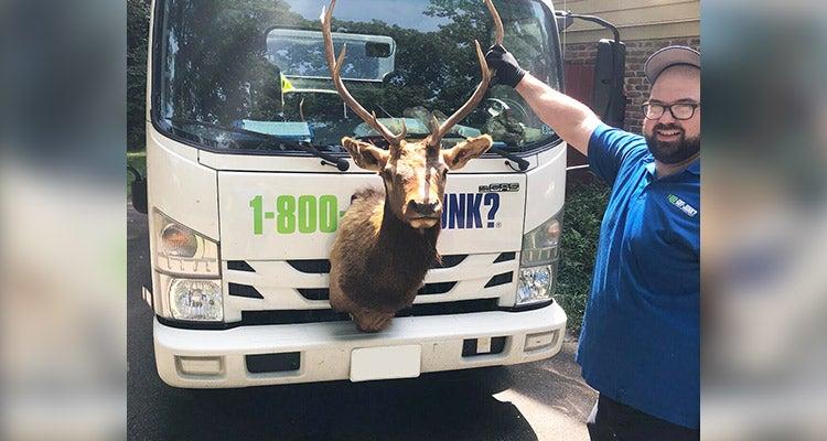 1-800-GOT-JUNK? truck team member posing with a deer head