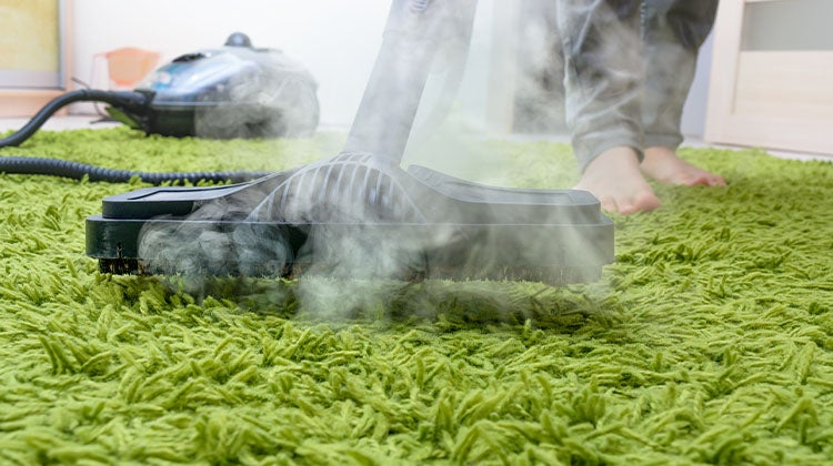 Cleaning green shag rug with a carpet steamer